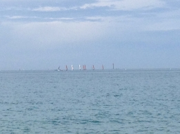 Sails in the distance