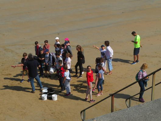 english lesson and beach exploring for students